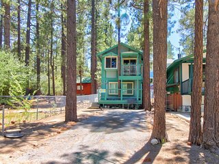 Cozy dog-friendly cabin near shops, restaurants, lake, skiing, and more