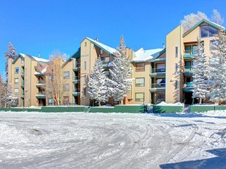 Comfortable, dog-friendly ski-in/ski-out condo for two!