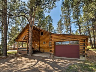 NEW! 'The Wolf Den' Cabin w/Pagosa Lake & Mtn View