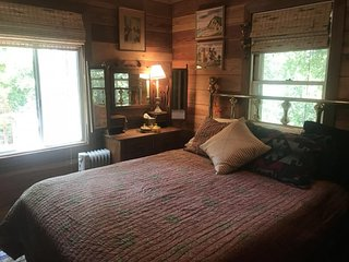 Cozy riverfront cabin w/ river view, access & entertainment - dogs OK!