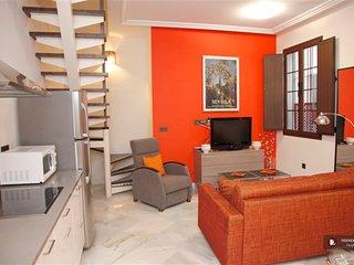 Superb 3 bedroom Apartment in Seville  (FC9436)