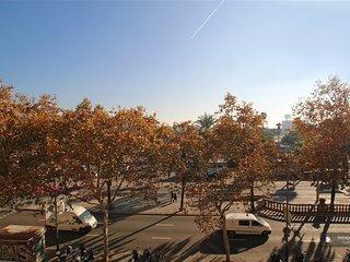 Wonderful 3 bedroom Apartment in Barcelona (FC5519)