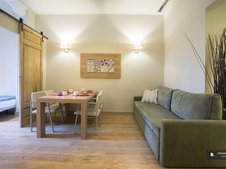 Splendid 2 bedroom Apartment in Barcelona (F6736)