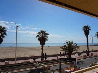 Tres bel appartement avec terrasse sur la plage de Canet