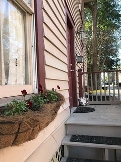 Front porch with window boxes