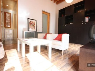 Charming 3 bedroom Apartment in Granada  (F3691)