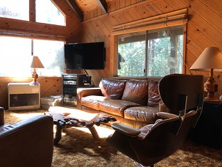 cabin.BLS: pet friendly 2br+loft, wifi, sleeps 8