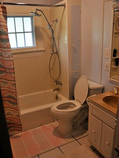 Full bathroom with shower massage