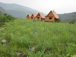 Ecotourist base in Bulgan Province, Mongolia