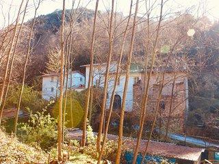 la casa nel bosco in antico frantoio