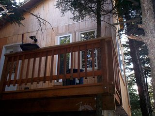 ALASKA 420 Friendly Treehouse SOAK in the Jacuzzi TUB, while SMOKING Alaska BUD