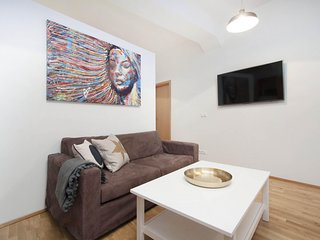 Bright and Spacious Downtown Studio Apartment