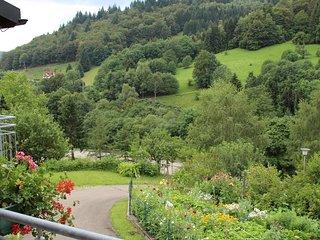 Apartment Gartentraum Todtnau - Romantische Ferienwohnung im Schwarzwaldstil