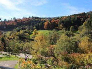 (#3) Romantische Ferienwohnung im Schwarzwaldstil mit Balkon und Berglick