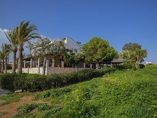 Cyprus Villa Kokkines 10 Gold