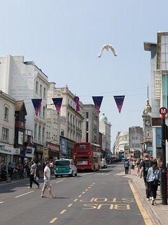 Central Brighton