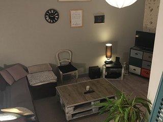 appartement cocooning idéal chateau de la Loire 4 personne