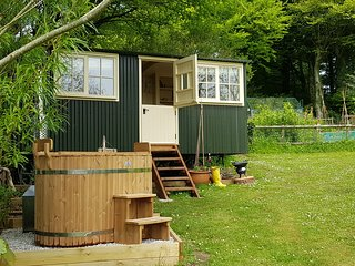 Pippins Shepherd's hut with private wood-fired hot tub