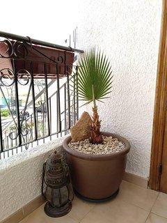 Detalle decorativo en terraza.