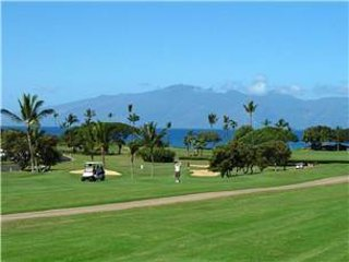 Maui Eldorado: Maui Condo A203