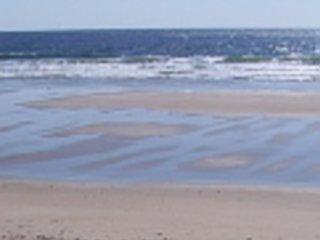 Ocean Dunes #12 (OD12)