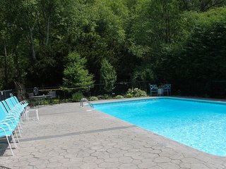 Poolside Oasis 6 Bed 3 Bath Near Beaches On Barbers Pond with Dock and Canoes!