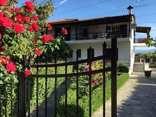 Stavrianna Eco Natural farmhouse 2  with 2 bedrooms 60 sqm Zahloritika Odontotos