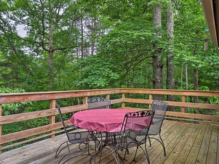 NEW! Charming Hiawassee Cottage w/ Forest Views!