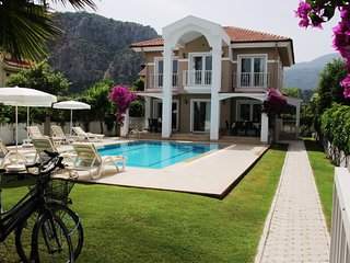 Villa Amazon: Peaceful Location,Large Pool,Spacious And Clean House,City 5 min.