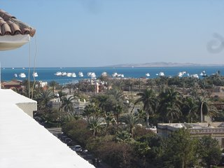 401 Private roof with Sea and Mountain View. Great location for amenities.