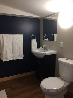 Private bath in a standard room with extra large stand-up shower