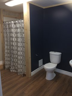 Private bath in the ground-level room with extra large stand-up shower
