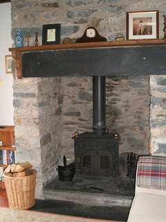 Traditional wood burning stove in the living room.