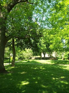 Magnificent gardens and a beautiful landscape park to enjoy a picnic with friends or family.
