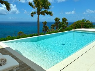 Villa Enzuma  - Ocean View :: Located in  Magnificent Toiny with Private Pool