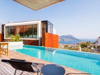 Luxury new award winning Altes-5 villas maximises superb sea views, private pool