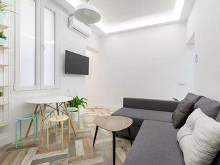 MODERN 2 BR 2 BATHS IN P.MAYOR