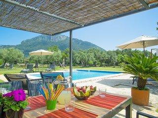 ES SEQUER DE BINIBONA - Villa for 8 people in Binibona