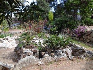 Agreable F3 avec sont jardin