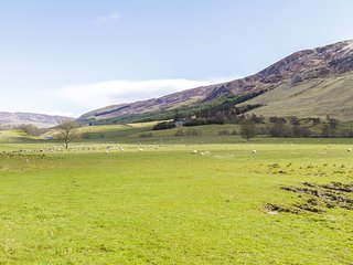 60238 Cottage situated in Glen Clova