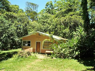 Forest Garden House