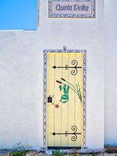 trompe l'oeil - frog image on wall - was a door