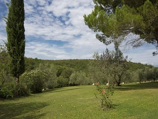 Country House Bosco Lazzeroni apartment in Montaione with WiFi, private terrace,