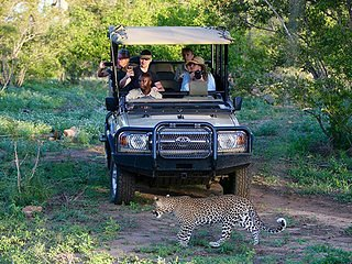 Imbali Safari Lodge, Luxury Kruger Park Lodge 3