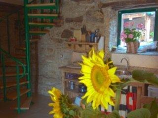 El Valle Perdido Casa Rural N03 El Almacen