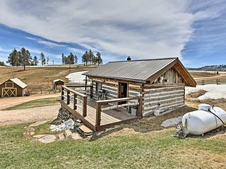 NEW! Remodeled '1910 Log Cabin' w/ Grill & Deck!