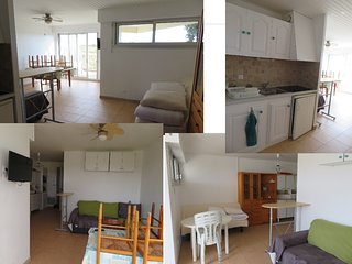 Appartement face aux dunes (50m plage)