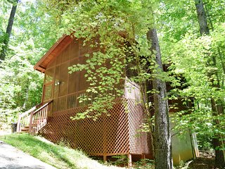 Bird Song Cabin- WIFI
