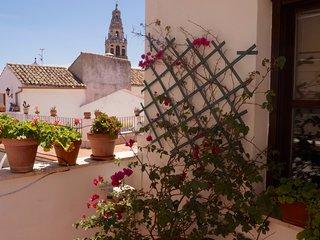 Fantastico Atico con terraza junto a la Mezquita, wifi y parking