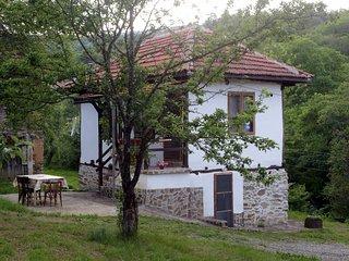 Zatizov home- Radlovtsi in Kyustendil region